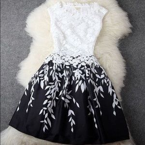Dresses & Skirts - B&W Dress