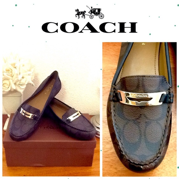 2037f764222 NWT Coach Olympia 12CM Loafers.