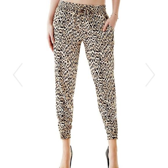 Who sells cheetah brand sweat pants?