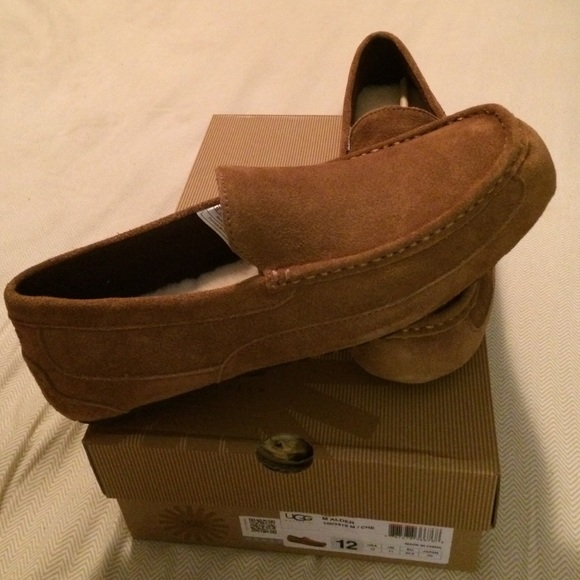 | Chaussures 14182UGG Chaussures | 3e97923 - freemetalalbums.info