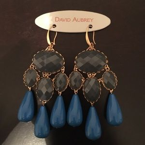 David Aubrey Blue Dangle Earrings
