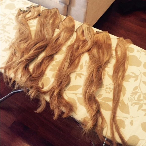 71 off euronext other clip in extensions light caramel human euronext other clip in extensions light caramel human hair pmusecretfo Choice Image