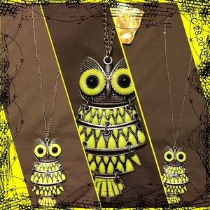 Long silver tone owl necklace.
