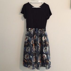 NWOT-Chicwish dress with floral mesh bottom