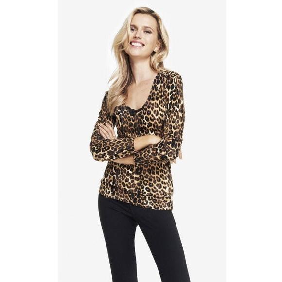 7fa29059aca6 Express Leopard Print V Neck Sweater. M_56909a7547da81c90603180b