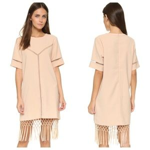 Dresses & Skirts - NWT Nude Pink Fringe Dress