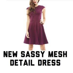 AX Paris Dresses & Skirts - Gorgeous Plum Sheer Fit & Flare Dress.