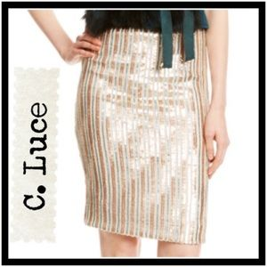 Gorgeous C. Luce Striped Sequin Skirt