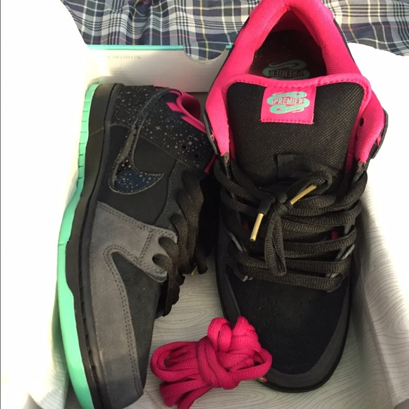 best authentic 90738 102b4 Nike SB