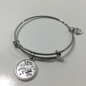 Jewelry - Leo Horoscope Charm Bracelet