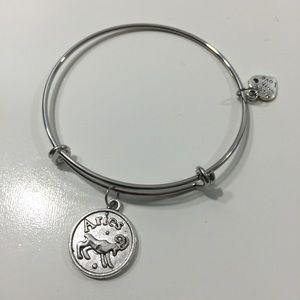 Jewelry - Aries Horoscope Charm Bracelet
