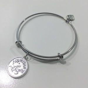 Jewelry - Aquarius Horoscope Charm Bracelet