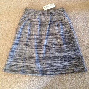 American Apparel A-Line Knit Skirt