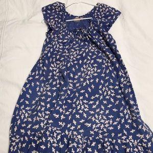 Zimmermann print dress