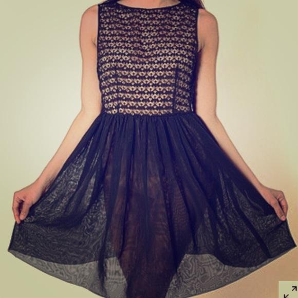 e37585b3b1b3b American Apparel Dresses   Skirts - American Apparel Lace   Chiffon Black  Sheer Dress