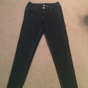 Lane Bryant Denim - Lane Bryant Skinny Genius FIt-14 Tall