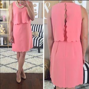 NWT LOFT size 2 peach scallop dress