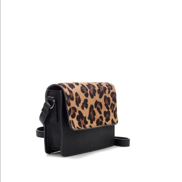 647b2c88302c Leopard Zara small cross body purse. M_56b6551e522b45188e007fdf
