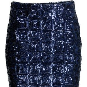 H&M Dresses & Skirts - NWT Blue Skirt with Sequined Embroidery