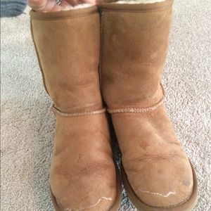 Classic short Uggs size 6.