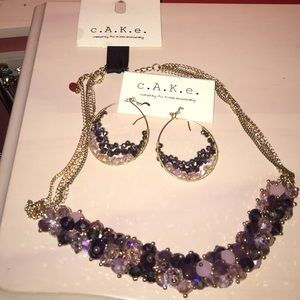 Cake Jewelry - Adjustable necklace and Matching earrings