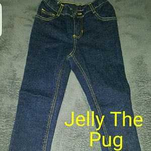 Jelly The Pug