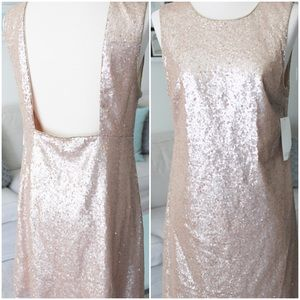 Promises Sequin Dress by TOBI