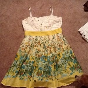 City Triangles Dresses & Skirts - dressy sundress with net underskirt worn once