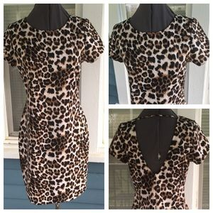 Annabelle Dresses & Skirts - NWT🚨ANNABELLE Leopard Print BodyCon Dress
