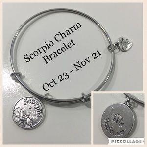Jewelry - Scorpio Horoscope Charm Bracelet