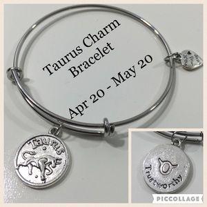 Jewelry - Taurus Horoscope Charm Bracelet