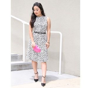 June & Hudson Dresses - ✨HP✨ Animal Print Midi Dress