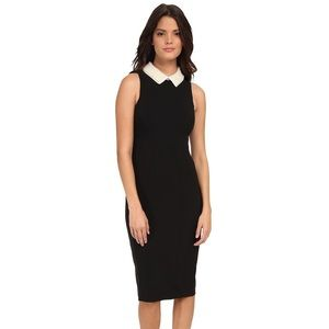 Maggy London Dresses & Skirts - Maggy London Knee Length Black Dress