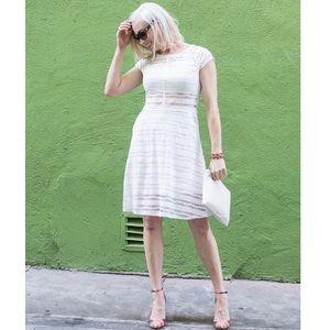 Weston Wear Dresses & Skirts - [Weston Wear]melodie lace stripe dress