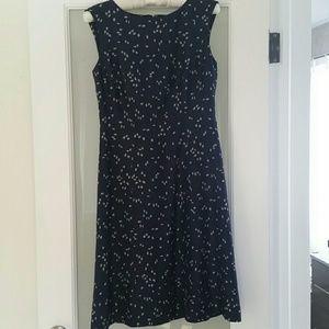 Lovely Ann Taylor Navy Silk Dress