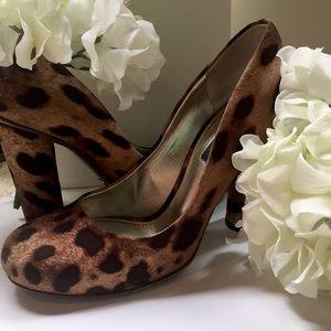 Leopard Print Dolce & Gabbana Pumps