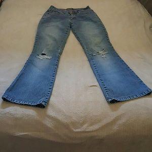 angel jeans plus size - Jean Yu Beauty