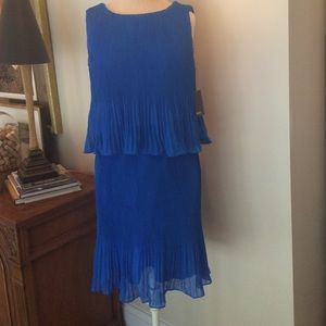 Muse Dresses & Skirts - Blue Muse sundress