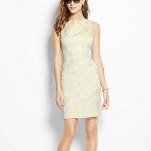 Ann Taylor Sundot Sheath Dress