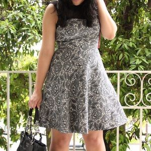 Betsey Johnson Grey Lace Print A-Line Dress