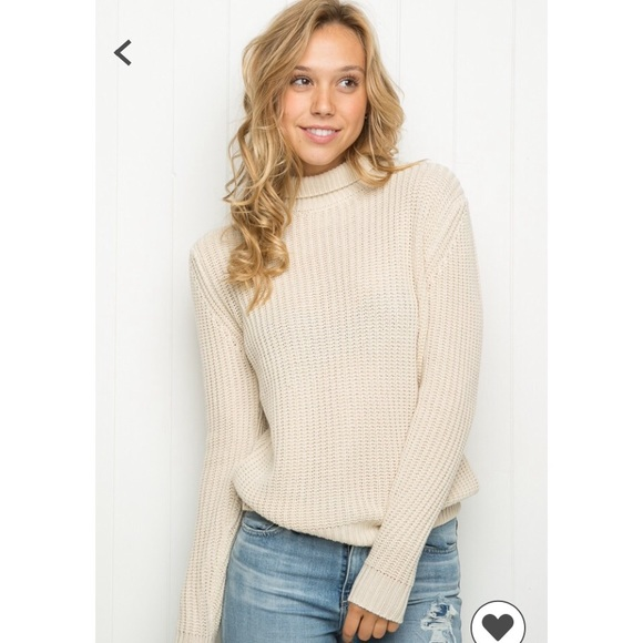 Brandy Melville Sweaters , Brandy Melville Georgia Turtleneck Sweater