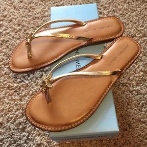 6e3fc1b0560422 ANTONIO MELANI Shoes - Antonio Melani Sand Gold Starfish Sandals