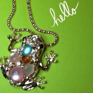 Jewelry - 🐸H.P. 5/13/16🐸 Gorgeous Frog Necklace Pendant
