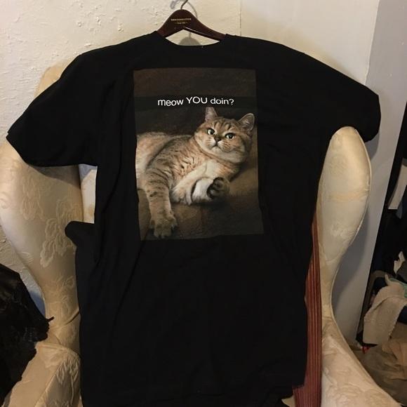 scoop away cat litter review