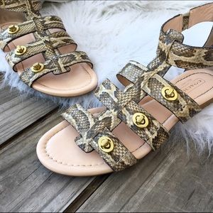 Coach Shoes - Coach leather gladiator sandals