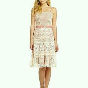Chelsea & Violet Dresses & Skirts - Chelsea & Violet Lace Dress