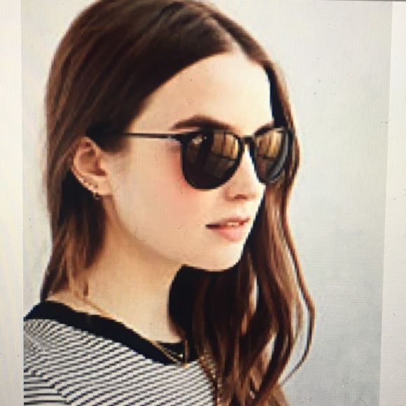 Ray Ban Erika Polarized Sunglasses