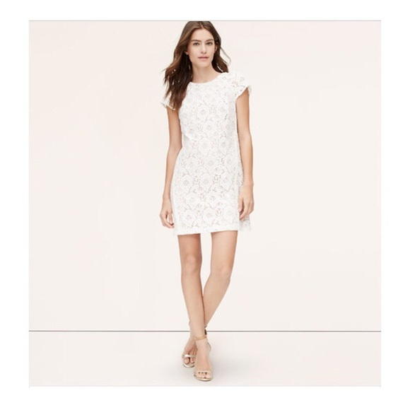 loft white dress. loft dresses - white short sleeve lace dress loft d