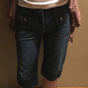 Banana Republic Pants - Banana republic size 2 dark blue jean shorts