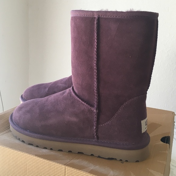 NEW uggs 'classic short' in color port